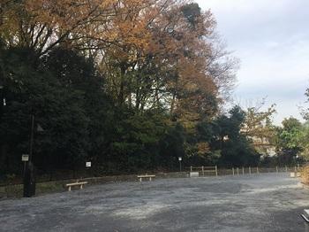 清水川公園006.jpg
