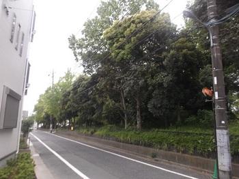 瀬戸口公園001.jpg