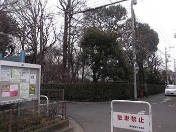 牧野記念庭園001.jpg