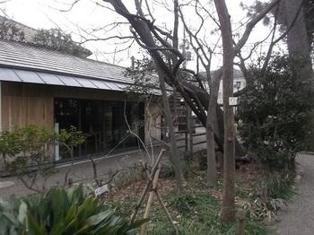 牧野記念庭園005.jpg