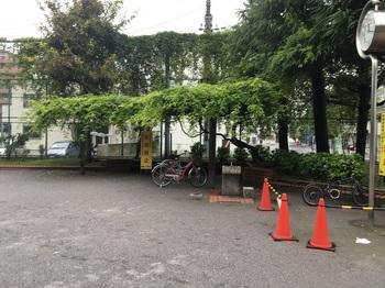 猿江二丁目公園002.jpg