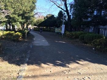 玉川上水旧水路緑道(大山町地区)006.jpg