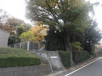 用賀一丁目公園001.jpg