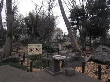 石庭の森緑地002.jpg