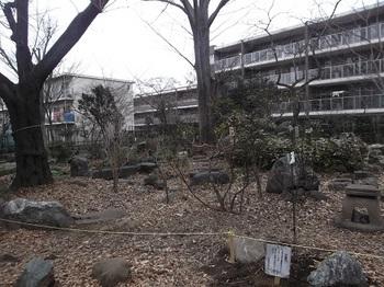 石庭の森緑地004.jpg