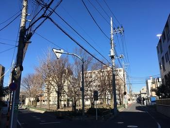 竹の塚第二公園001.jpg