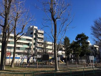 竹の塚第五公園001.jpg