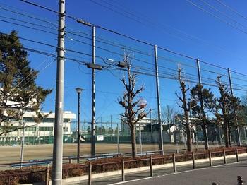 竹の塚第六公園001.jpg