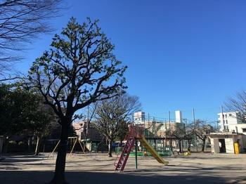 竹の塚第六公園009.jpg