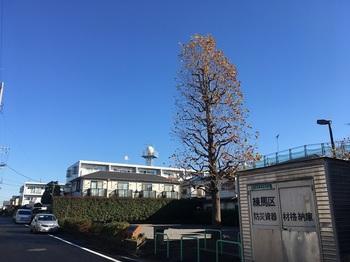 竹下ひだまり公園001.jpg