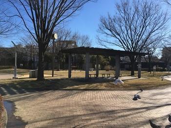 竹北公園002.jpg
