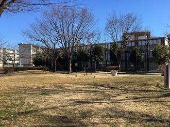 竹北公園003.jpg