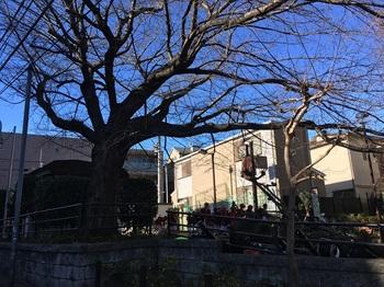 笹塚東公園002.jpg