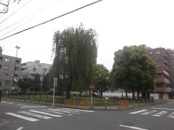 篠崎公園34号地001.jpg