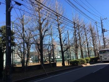 綾南公園001.jpg