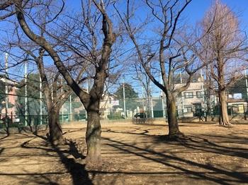 綾南公園002.jpg