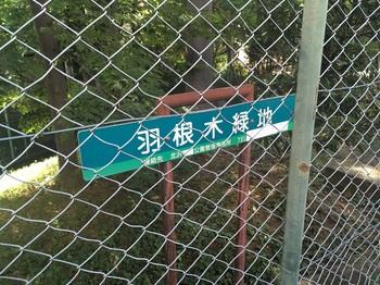 羽根木緑地002.jpg