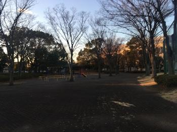 羽生中央公園006.jpg