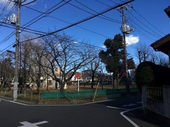 花又公園001.jpg