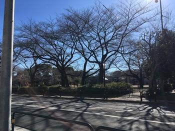 花畑公園001.jpg