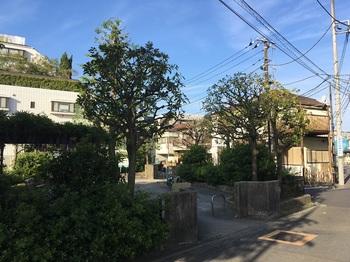 若林五丁目公園001.jpg