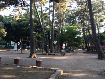 若林公園011.jpg