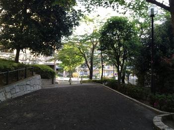 若林公園015.jpg