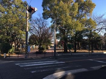 藤崎第三公園001.jpg