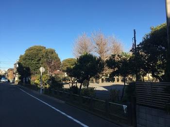 藤崎第二公園001.jpg