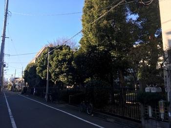 藤崎第六公園001.jpg