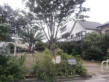 道灌橋公園007.jpg