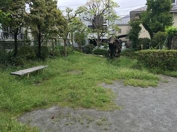 野川北公園002.jpg