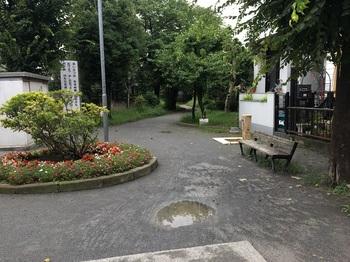 野川緑地公園007.jpg