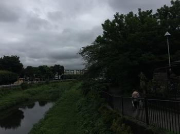野川緑地公園020.jpg