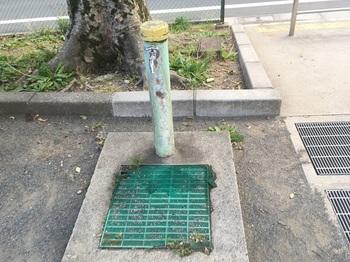 野毛西公園006.jpg