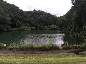 長池公園006.jpg