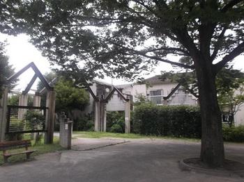 関原ふれあい防災公園002.jpg