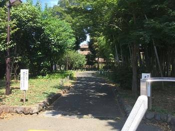 関町北五丁目緑地002.jpg