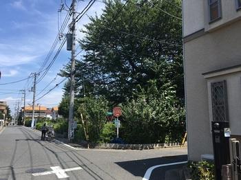 関町北公園001.jpg
