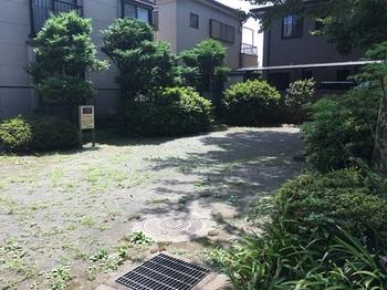 関町北緑地002.jpg