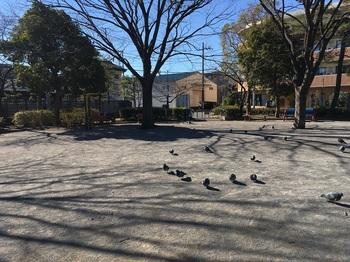 陣川戸公園007.jpg