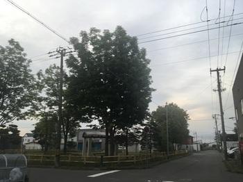 音羽一丁目公園001.jpg