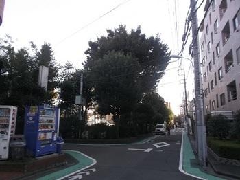馬場東公園001.jpg