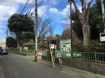 高円寺東公園001.jpg