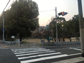 高津公園001.jpg