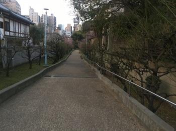 高津公園009.jpg