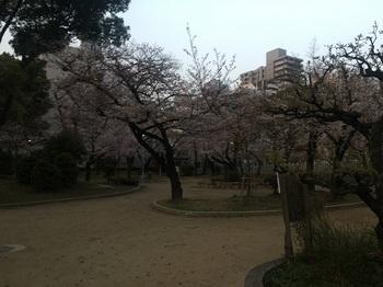 高津公園011.jpg