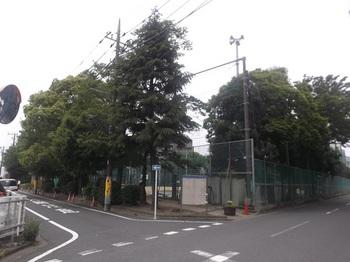 高田公園001.jpg