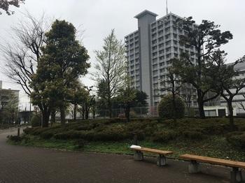 NHK放送技術研究所庭園004.jpg