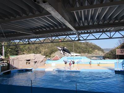下田海中水族館005.jpg
